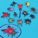 Insect Toy Assortment